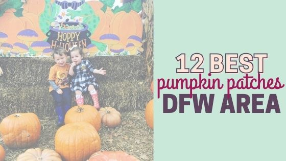 12 Best Pumpkin Patches near Fort Worth, TX (and Dallas!)